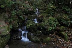 柳の滝 渓流