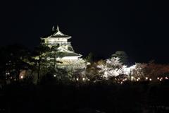 丸岡城 ライトアップ