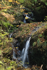 柳の滝 小滝4