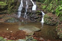 秋芳 白糸の滝 下段