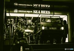 SEA BEES