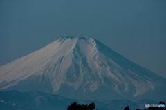 コミミフィールドから富士山