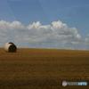 大地と牧草ロール