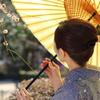 和傘と梅と着物女性