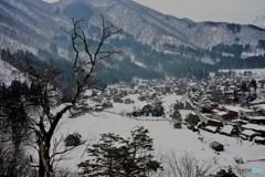 冬の始まり2(展望台)