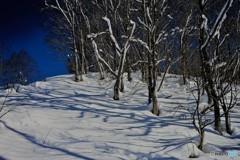 荘川冬景色5