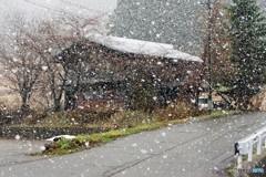 白川村は雪
