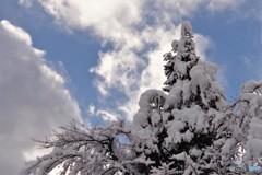 白川郷冬の始まり4(いっときの晴れ間)