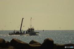 カモメと作業船