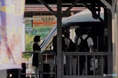 飛騨古川1(特急入線)