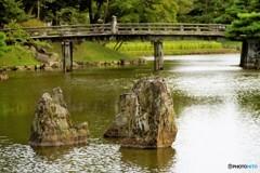 彦根城5玄宮園(お気に入りの石)
