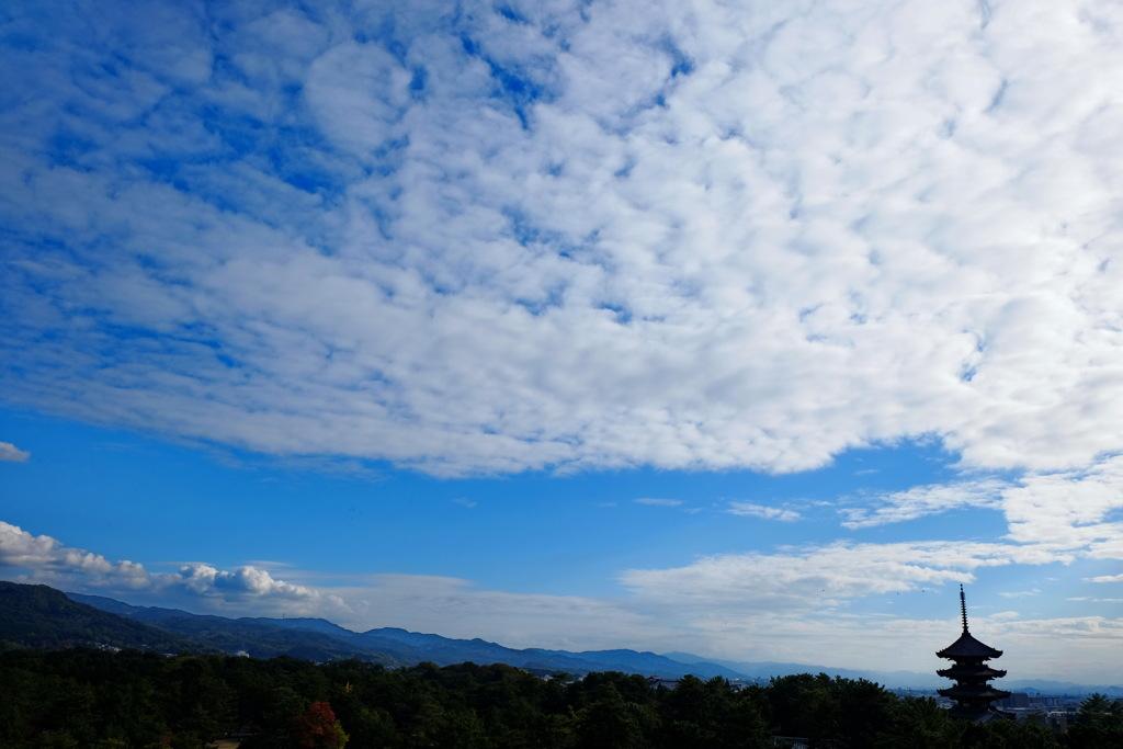 興福寺 秋景
