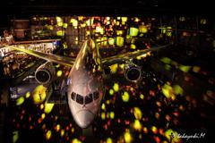 FLIGHT OF DREMS 787