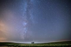 星の降る夜