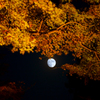 月夜の月見坂 3