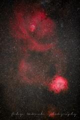 Gift of The Rosette Nebula