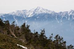 春先の北岳