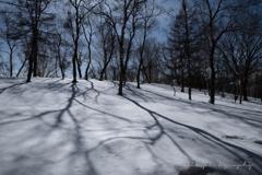 西南の風、冬の日差し