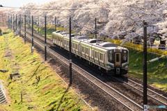 千本桜×E721