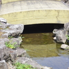 小川にかかる橋