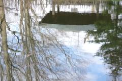 水面の風景 2