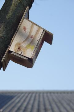 農業公園 2(鳥の巣箱)