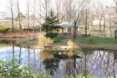 東屋と池の周り