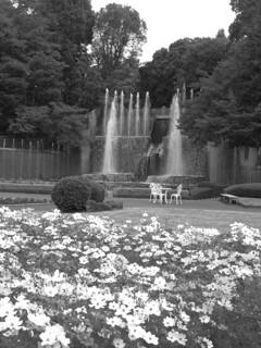 滝・大噴水