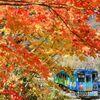 会津の秋#3