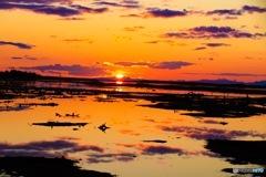 根室春国岱 国後に沈む夕日