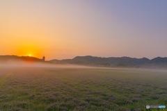 備中国分寺とレンゲ草の朝