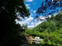 空、緑、池