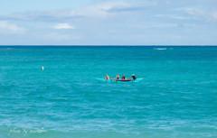 ハワイ探検隊