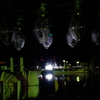 夜露と集魚灯