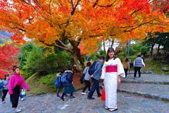絶対日本人ではない和装の女性 1