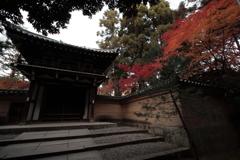 京都-奈良~紅葉のある門~
