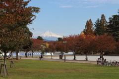 富士山の見える場所