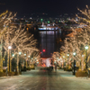 冬の八幡坂