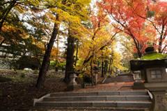 雨後の参道日枝神社