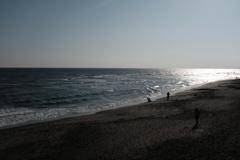 稲村の海岸