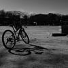 休日の白川公園