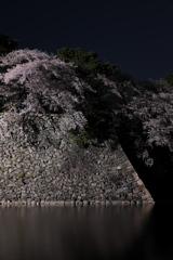 お堀の夜桜2018 2