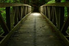 橋の向こう。