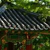 韓国的眺望。