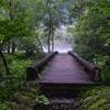 早朝の焼見橋。