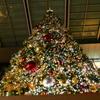 聳えるクリスマス。