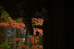 日本的な美。