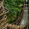 吊り橋に。