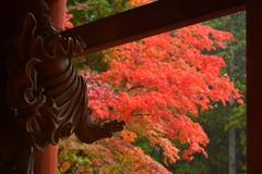 増長天と紅葉。
