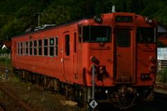 鱈子電車。